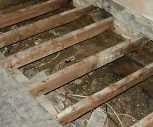 dampness under floors