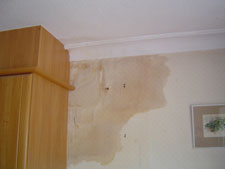 Damp Penetration caused by leaking roof