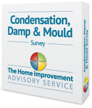 condensation damp and mould survey