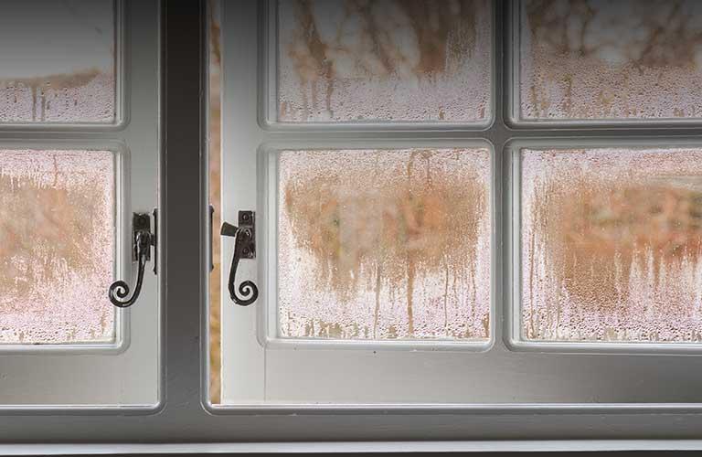 damp surveys yorkshire